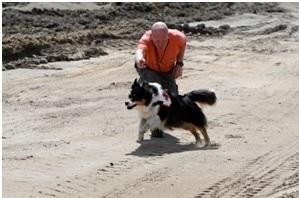 Mosbach mit Hund